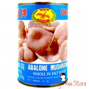 Abalone Mushroom -  DRAGONFRY