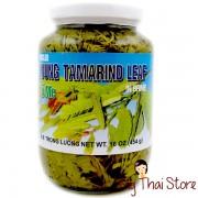 Young Tamarind Leaf - CARAVELLE